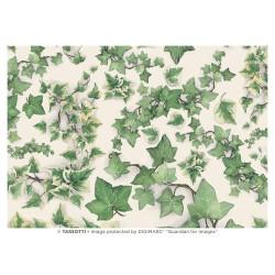 Papel de Cartonaje Hiedra, 50x70 cm