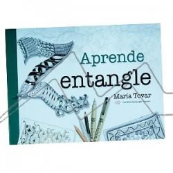 Libro de iniciación aprende Zentagle